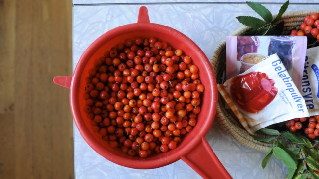 nydelig hjemmelaget tyttebærsyltetøy
